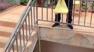 ( Phim Hài Ngắn ) Coi Là Cười Toác Mỏ P1 - Bùi Sỹ Dũng Vlogs