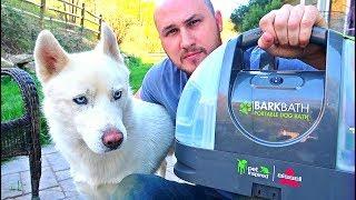 Testing BarkBath Dog Bath System