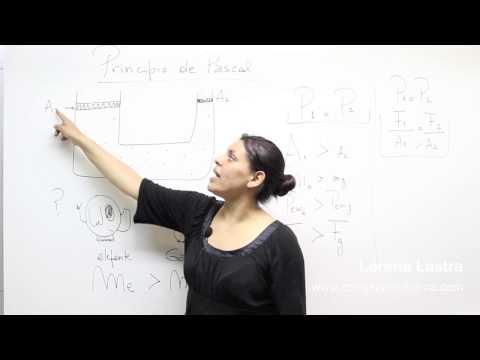 Física LL Nº10