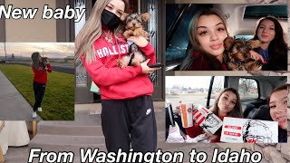 Vlog: Driving 16 hours to get a new puppy!