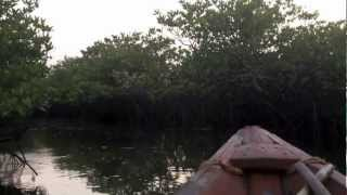 Suduaya - Shamanic Light (Feat. Amin) HD
