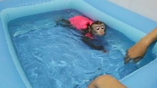 Monkey Baby Nui | Nui was bathed in the new pool