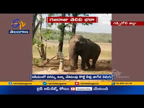 Viral video: Thirsty elephant operates hand-pump to drink water
