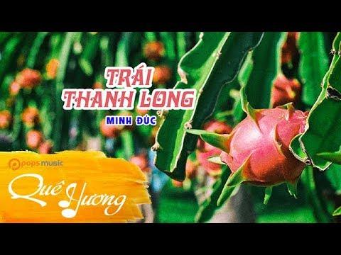 Trái Thanh Long | Minh Đức