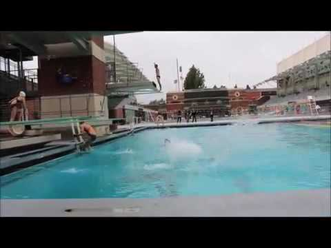 Women Competition Swimwear | Yingfa Swimwear USA