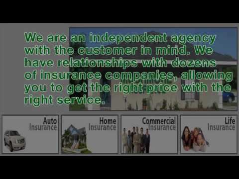 Insurance - Financial Services - 727-226-1076