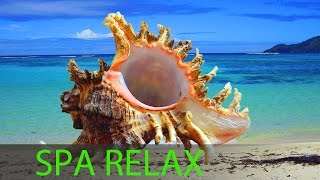 6 Hour Best Relaxing Spa Music, Background Music, Soothing Music, Massage Music ☯357