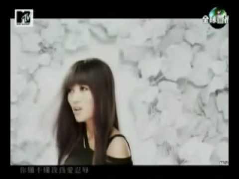神木與瞳寬恕,寬恕MV,寬恕歌詞