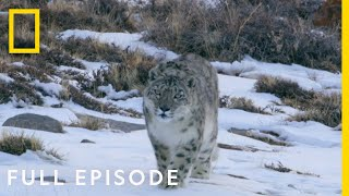 Mountains (Full Episode) | Hostile Planet