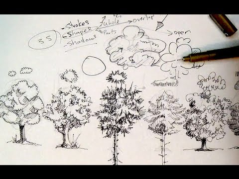 Pen Amp Ink Drawing Tutorials How To Draw Trees Youtube