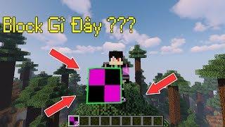 Top 5 Thứ Mà 1000,1% Các Bạn Chưa Bao Giờ Thấy Trong Minecraft - Block Bí Ẩn Siêu Lớn !!