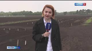 «Вести Омск», утренний эфир от 15 мая 2021 года