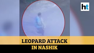 Leopard attacks two people in Nashik's, bone-chilling vide..