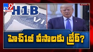 Trump expected to order new restrictions on H-1B, L-1 visa..