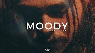 "(FREE) Drake x Post Malone Type Beat - ""Moody"" Trap/Rap Instrumental Beat 2017 I Prod. CXDY"