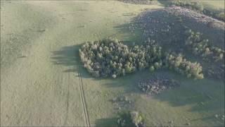 Snimao je dronom šumu, a onda je slučajno na 0:32 uhvatio OVO! (VIDEO)