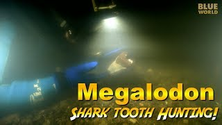 Megalodon Shark Tooth Diving! | JONATHAN BIRD'S BLUE WORLD