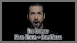 Avi Kaplan - Bass + Low Notes