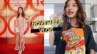 Spicy Times at Home & Vegas | Nov Vlog