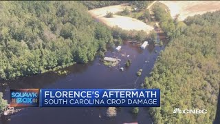 Florence's damage was 'worse than anticipated,' says South Carolina agriculture commissioner