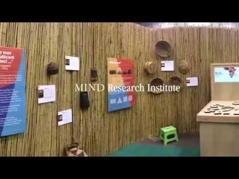 South of the Sahara: Origins of Mathematics Unveiled at Math Fair 2015