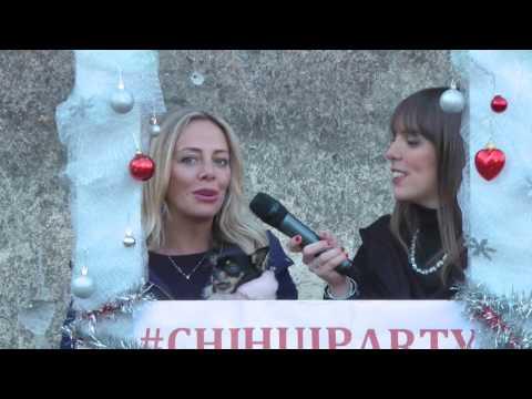 Zampe alla moda - Episodio 5 Chihuahua Party