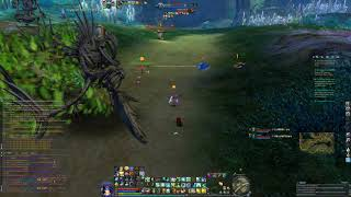 Aion US 5.6 Katalam - Cygnea PvP Gameplay Cleric - #NoobConection #OverKill (Oct 22 2017)