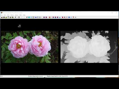 How to make 3D wiggle movie with SPM Stereo Maker