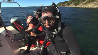 RMR: Rick Goes Snorkelling with Seals