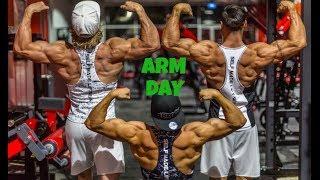 Arm Day Workout ft Tyrone Elliott and Liam Burnham - Ty Haynes