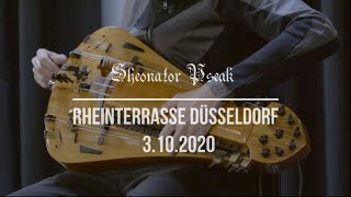 Sheonator Pseak - A Knight's Way To Die. Hurdy Gurdy, Percussion, Voice.