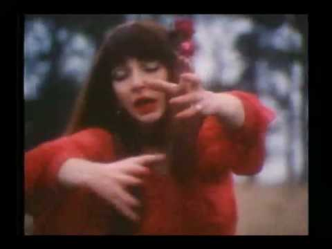 Kate Bush Wuthering Heights - #traffic-club