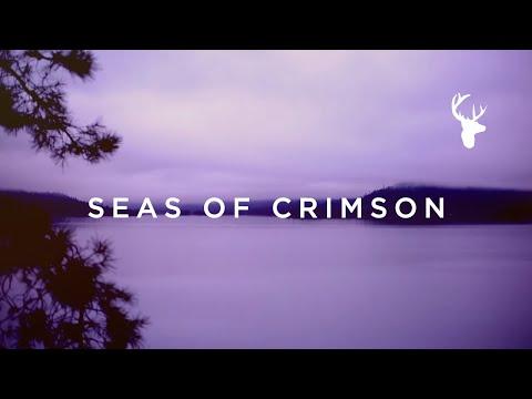 Пурпурните морета (Seas Of Crimson)