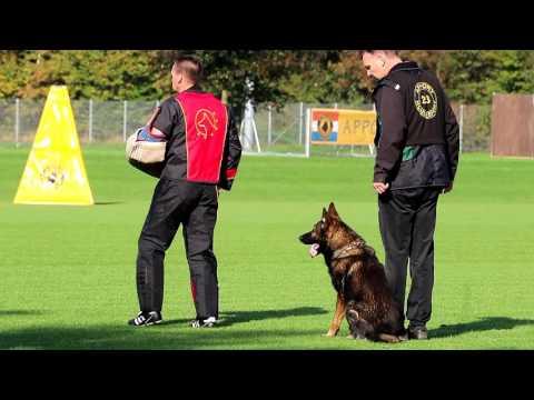 NIK 2016 Frank de Leu Emm van Casinohof Protection 93 P