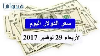 تعرف على سعر الدولار الأمريكي اليوم في السوق المصري     -