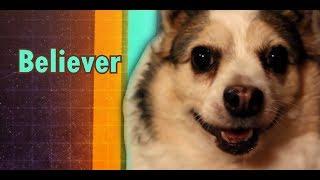Imagine Doggos - Believer
