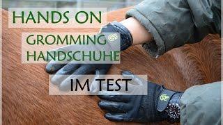 HandsOn Grooming Handschuhe IM TEST | PRODUKTVORSTELLUNG | MissysVlogs