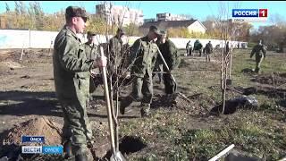 Сотрудники следственного комитета во время городского субботника высадили липы