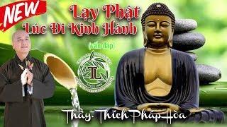 Có Nên Lạy Phật Lúc Đi Kinh Hành không? (vấn đáp) - Thầy Thích Pháp Hòa