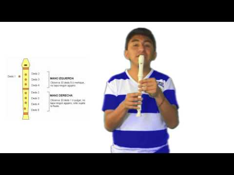 Curso de Flauta Dulce - CAPITULO 1 TECNICAS DE LA FLAUTA DULCE