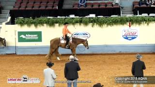A Judge's Perspective  2015 World Show Senior Western Pleasure