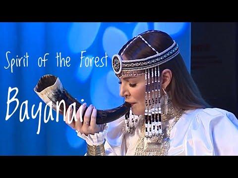 Aleks - Spirit of the Forest