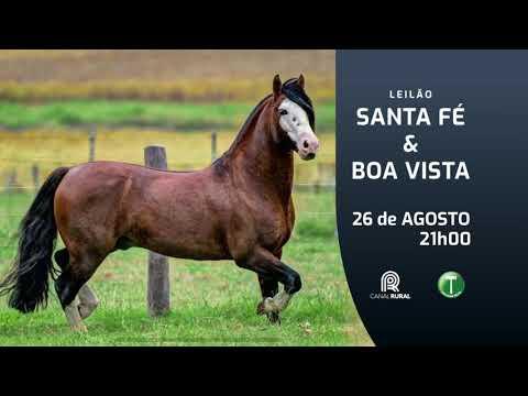Santa Fé & Boa Vista