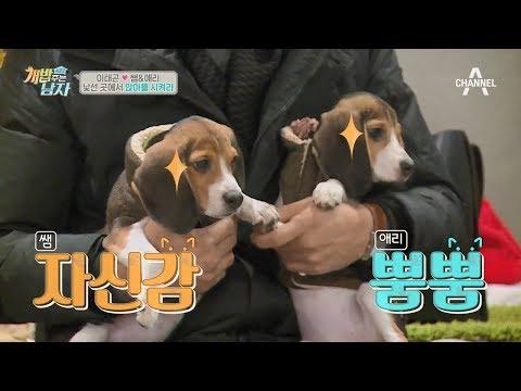 [예능] 개밥주는남자 시즌2 38회 - 뚜이와 김민교 가족의 만남! 원없이 달려보자~!