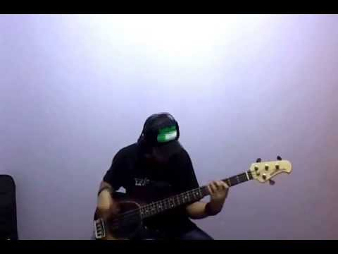 Red Hot Chili Peppers - Apache Rose Peacock (Bass Cover)