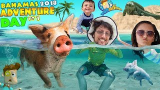 SWIMMING with PIGS in BAHAMAS + IGUANA ISLAND FV Exuma Tour Adventure Day #1
