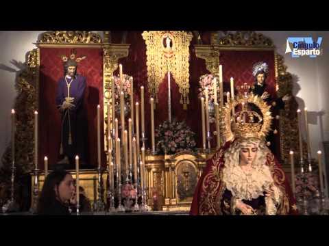 Besamanos Virgen de la Salud de San Gonzalo