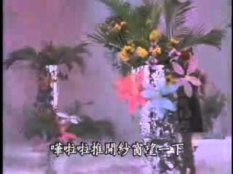 姚蘇蓉~像霧又像花