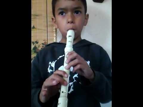 Los pollitos dicen en flauta dulce
