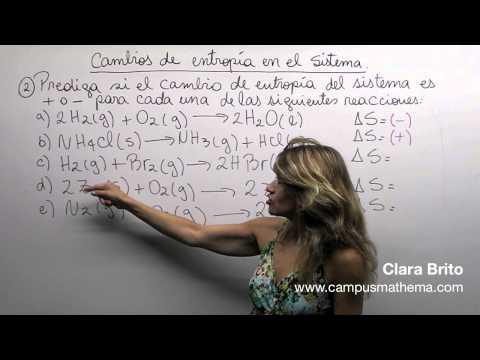 Termodinámica 24
